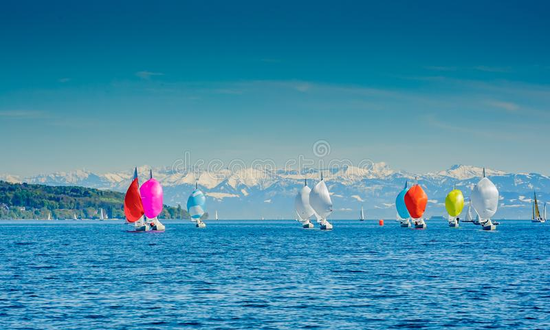 Lake constance appears to be a mountain lake. Boats with spinnakers up royalty free stock photo