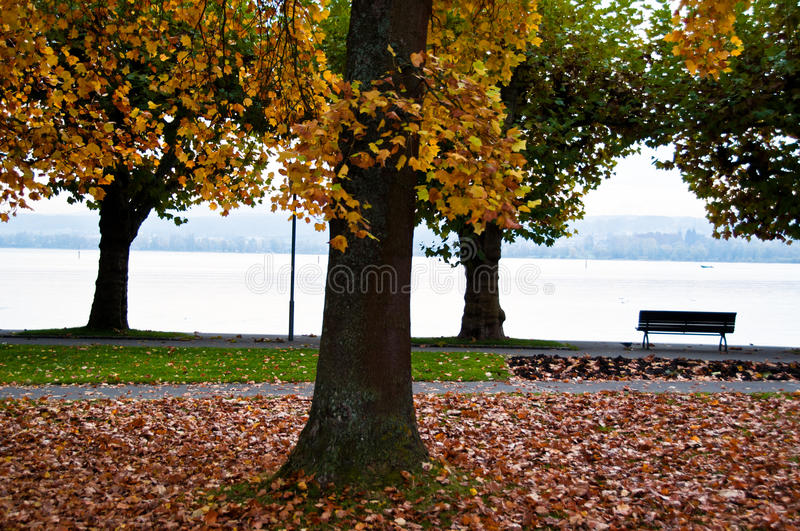Lake Constance in fall