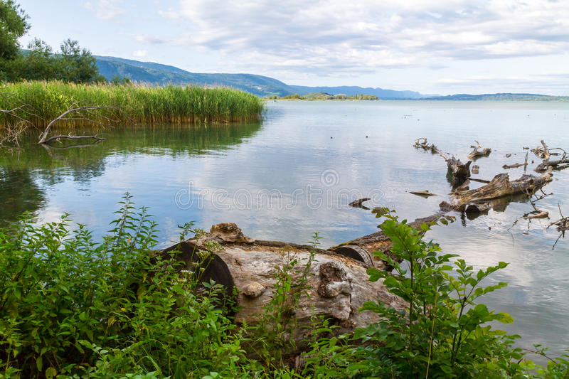 Lake In Countryside Royalty Free Stock Images