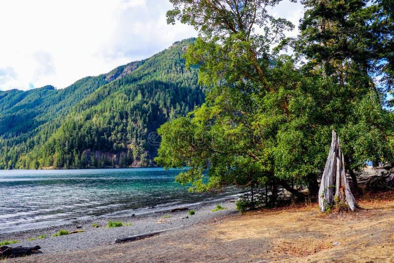 Lake Crescent at Olympic National Park, Washington, USA.  royalty free stock images