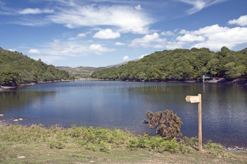 Lake Cynwch, Wales.