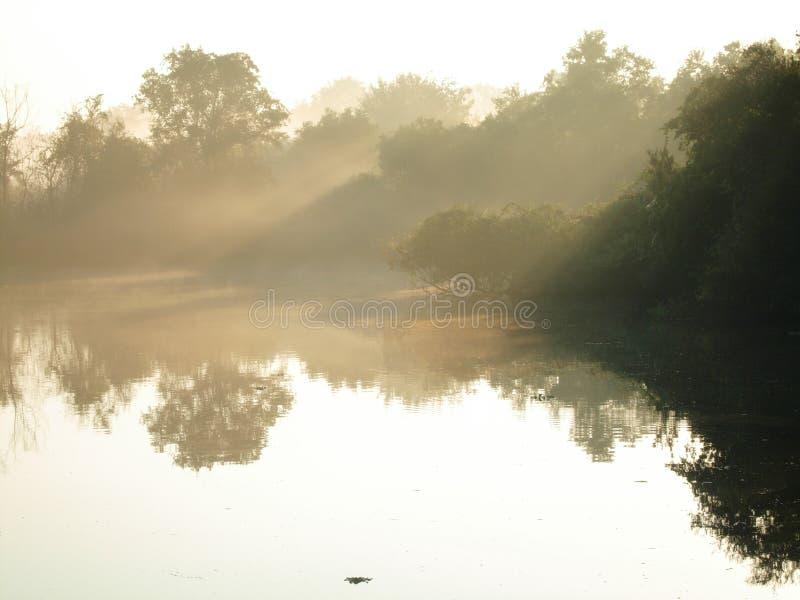 Download Lake at dawn stock image. Image of nature, early, dawn - 1403097