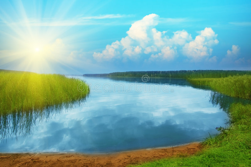 Download Lake in deep forest stock image. Image of sunny, sunlight - 8840875