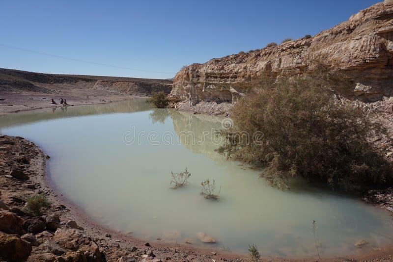 Lake in the desert royalty free stock image