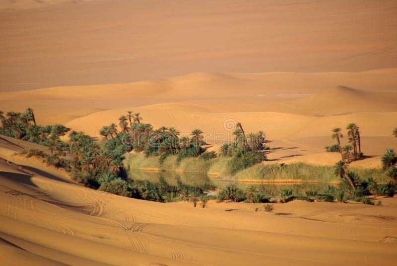 Lake In The Desert Of Libya Royalty Free Stock Image