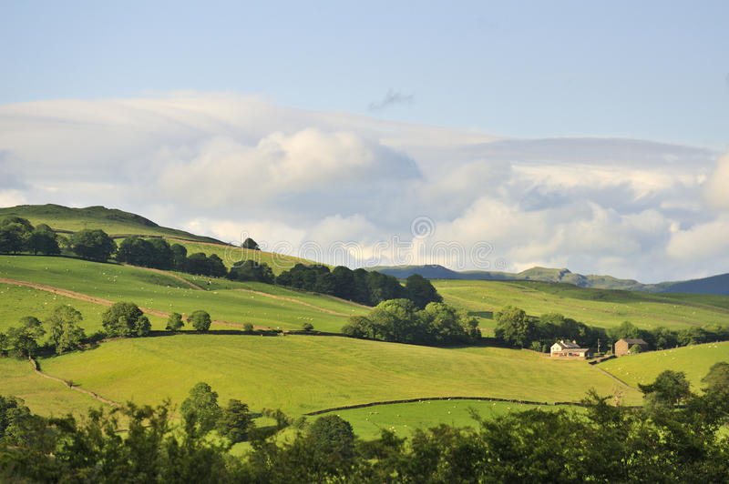 Download Lake District, Farm On The Fells, Cumbria Stock Image - Image: 25453123