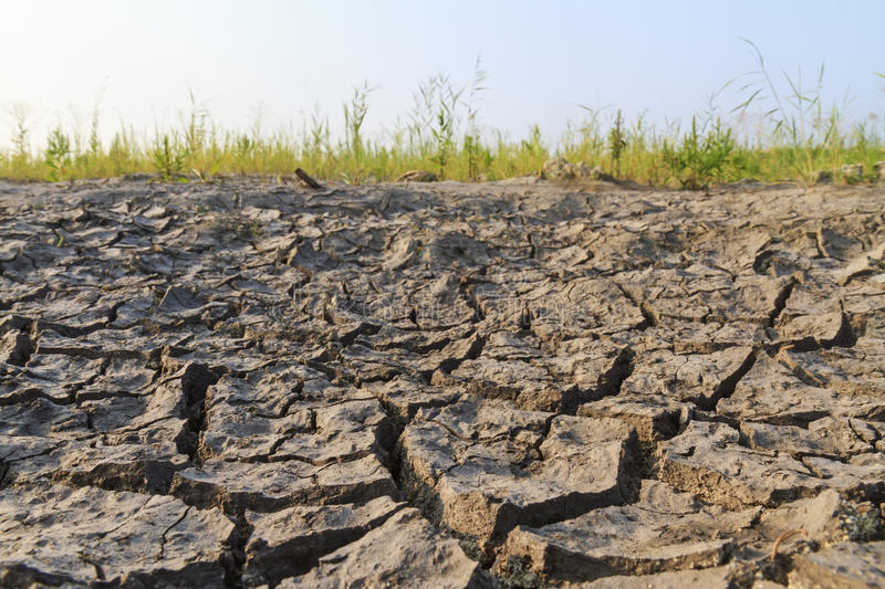 Lake that dried up. Global warming, drought crack royalty free stock image