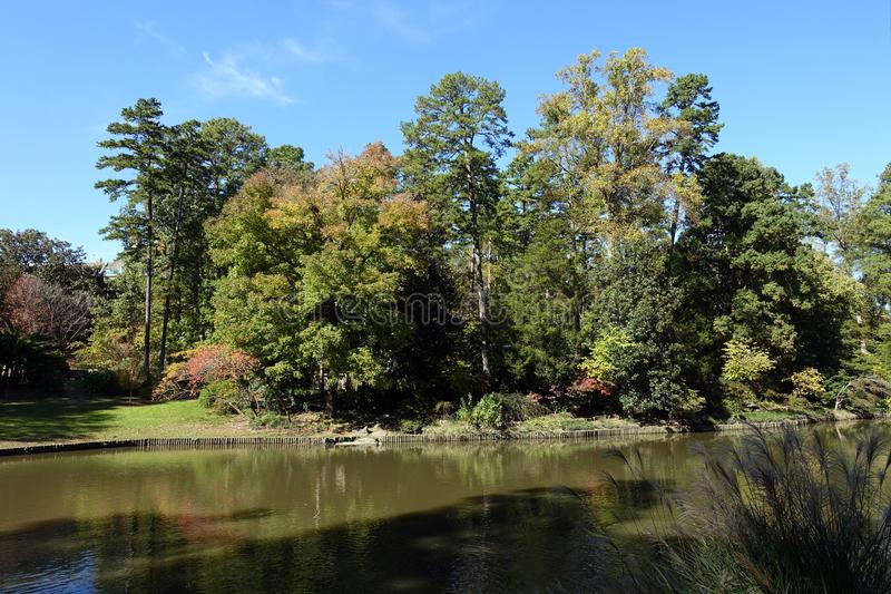 Lake in Durham, North Carolina on a Summer Day. Lake in Durham, North Carolina in Late Summer, Right as the Leaves are Beginning to Change Colors royalty free stock image