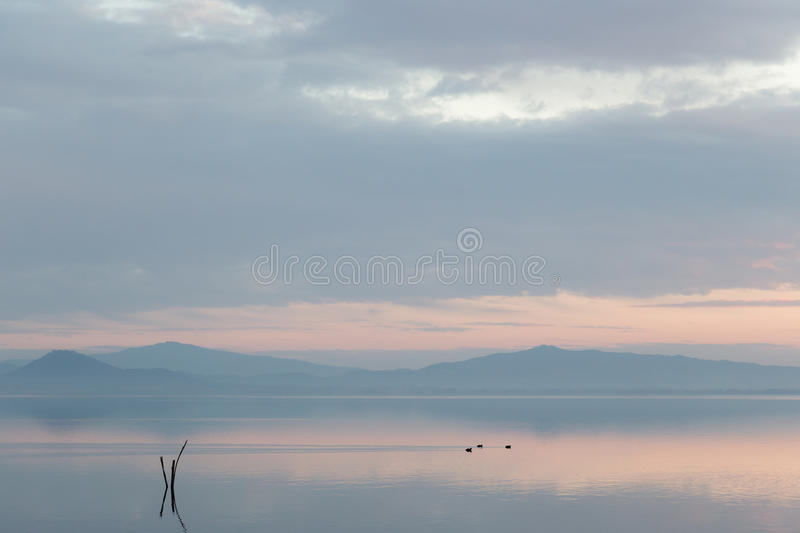 A lake at dusk, with soft light, warm color, distant hills and m. Ountains, some ducks on the water and wooden poles in the foreground royalty free stock photo