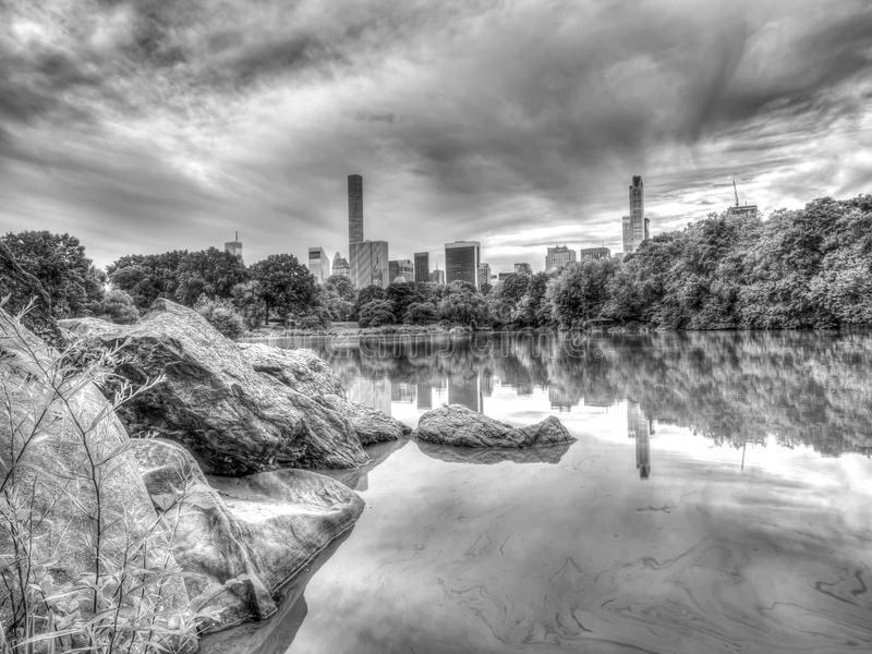 At the lake early morning. At the Lake in Central Park, New York City royalty free stock images