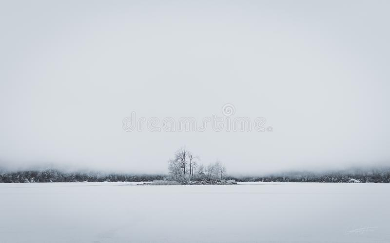 Lake Eibsee frozen snow in bavaria under deep fog inclusive island of trees royalty free stock photography