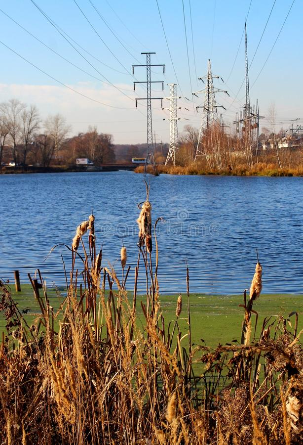 Lake and electric poles on the opposite bank stock photo image of download lake and electric poles on the opposite bank stock photo image of bush m4hsunfo