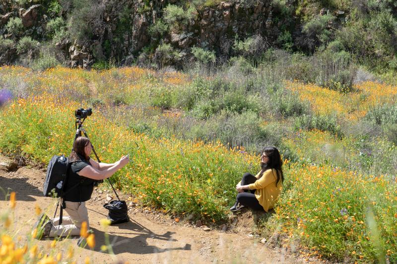 Lake Elsinore, California -A professional photographer takes portraits of a beautiful woman in the poppy fields royalty free stock photo