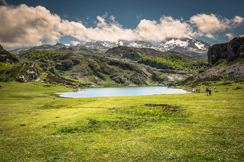 Lake Ercina. Cantabrian. Covadonga. Asturias. Spain. Lake Ercina. Cantabrian. Covadonga Asturias. Spain royalty free stock photo
