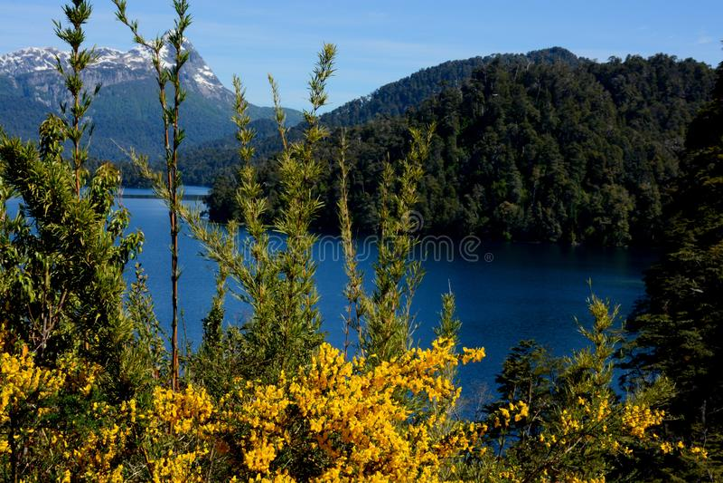 Mirror Lake, Way of the Seven Lakes, Bariloche royalty free stock photo