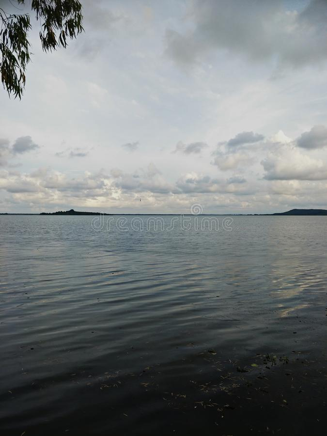 Lake in the evening. A lake is an area filled with water, localized in a basin, that is surrounded by land, apart from any river or other outlet that serves to royalty free stock images
