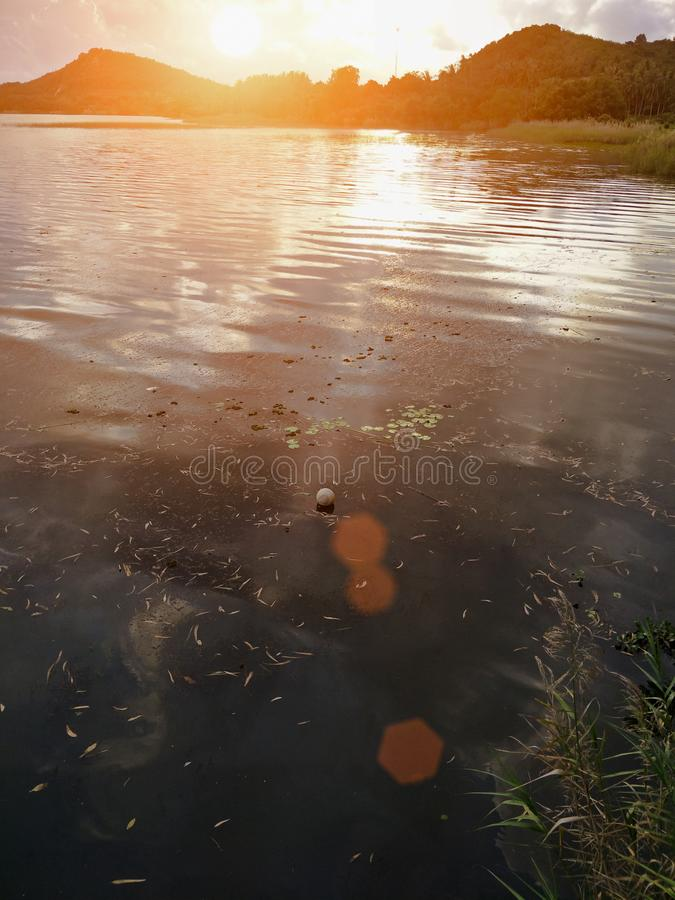 Lake in the evening. A lake is an area filled with water, localized in a basin, that is surrounded by land, apart from any river or other outlet that serves to royalty free stock photo