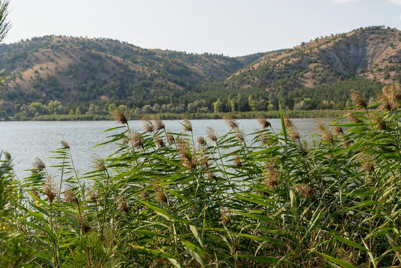 Lake Eymir in Ankara, Turkey stock image