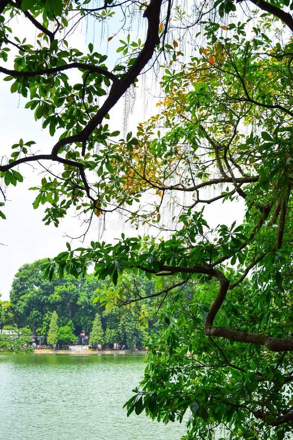 lake för kiem för hanoi ho hoan little gammalt torn vietnam för delsymbolsköldpadda Sköldpaddatornet är symbolet av Hanoi, VI royaltyfri fotografi