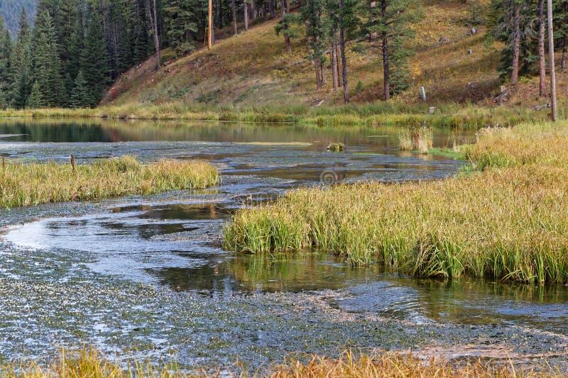 Samll lake of Spearfish Canyon, South Dakota. Lake in a fall landscape in Spearfish Canyon, Black Hills, South Dakota stock photography
