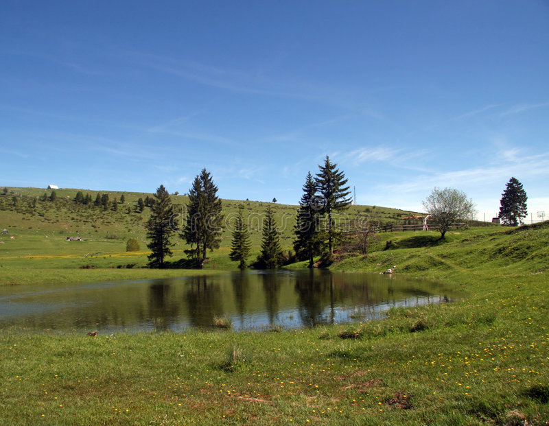 Download Lake at the field stock photo. Image of surface, fields - 854120