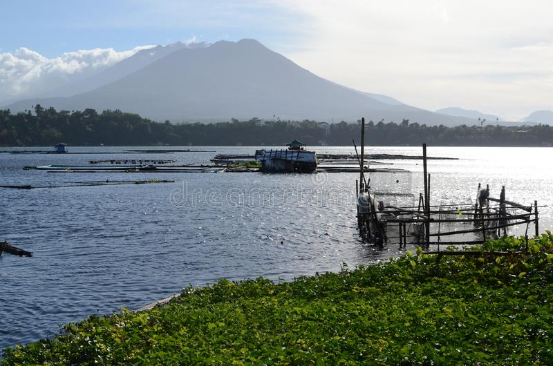 Lake fish cage full of water lilies environmental issue confronting fish farming. San Pablo City, Laguna, Philippines - January 21, 2017: Lake fish cage full of stock photos