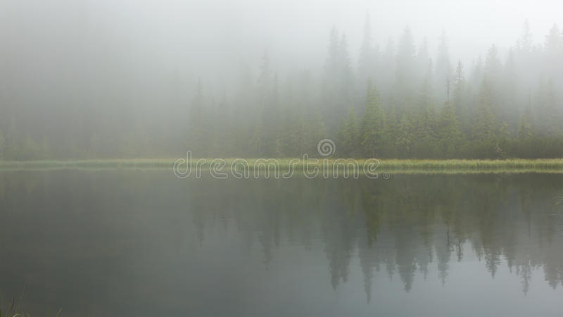 The lake in the fog royalty free stock photography