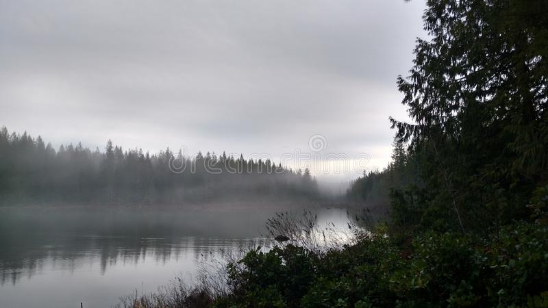 Lake stock images