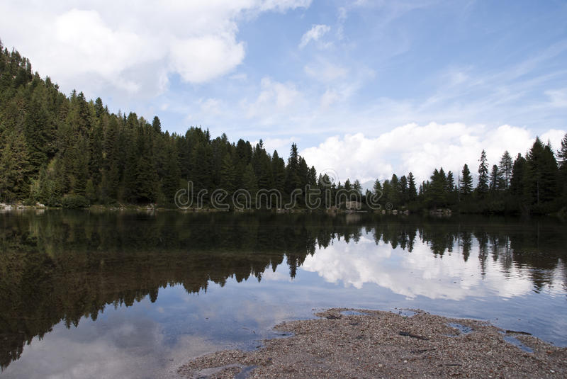 Lake with forest royalty free stock photography