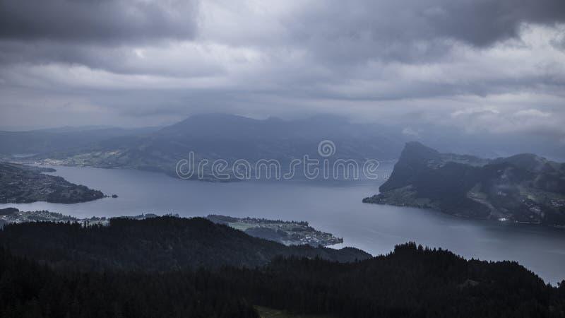 Lake&forest στοκ φωτογραφία με δικαίωμα ελεύθερης χρήσης