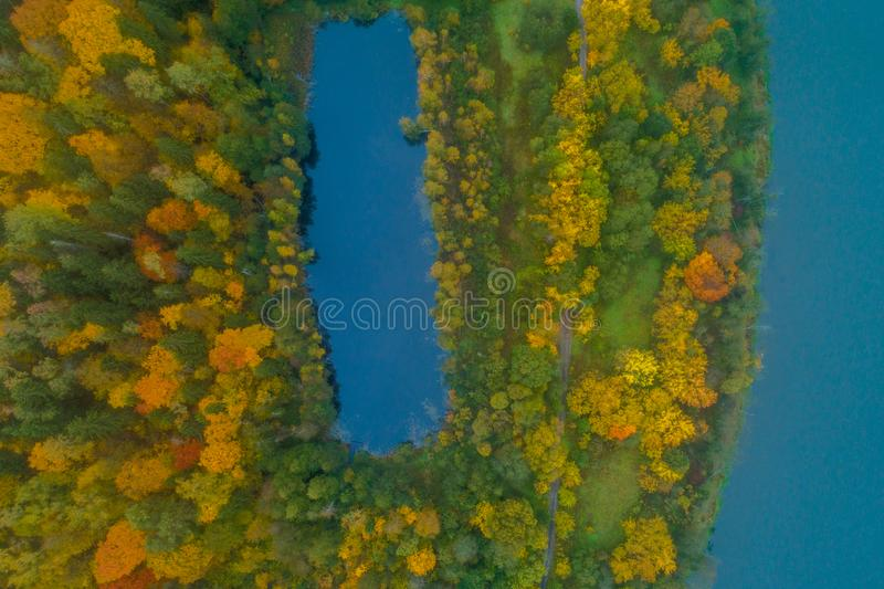 Lake and forest, aerial royalty free stock photo