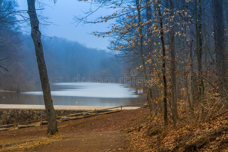 Lake in the forest in fall stock photography