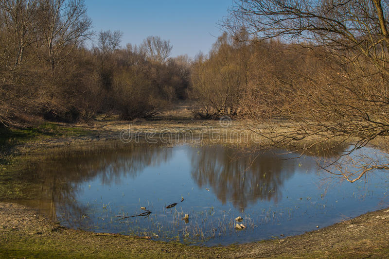 Lake and a forest in the late spring afternoon. Round shape of a lake, reflecting blue sky in the late afternoon. Trees around, still without leaves in the early stock photos