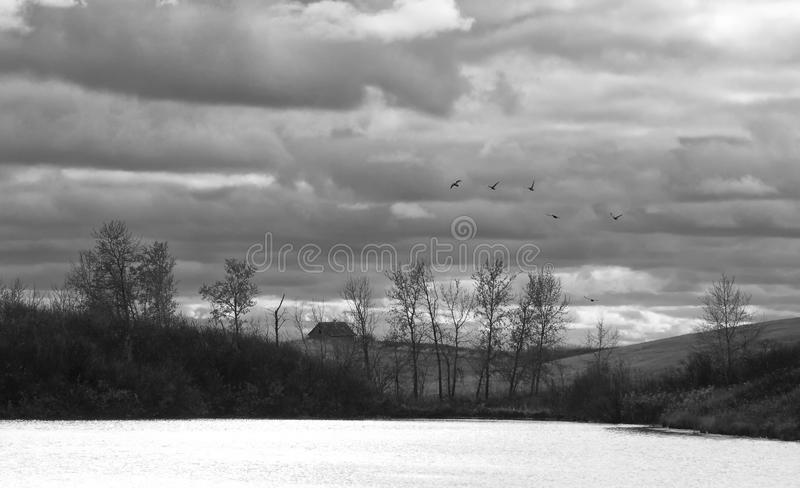 Lake in front of rolling farmland. Lake and trees in front of hilly farmland in black and white royalty free stock image