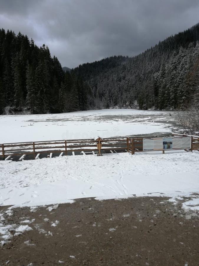 Lake frozen romania royalty free stock image