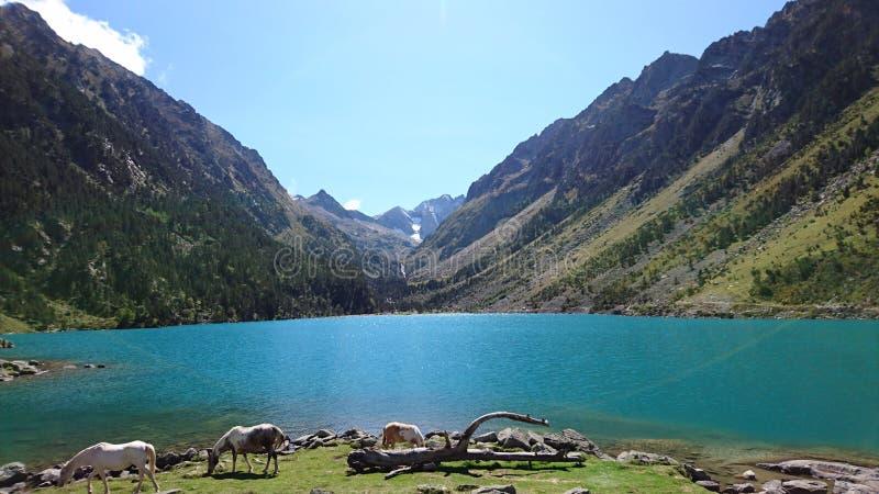 Lake of Gaube Cauterets Pyrenees stock photo