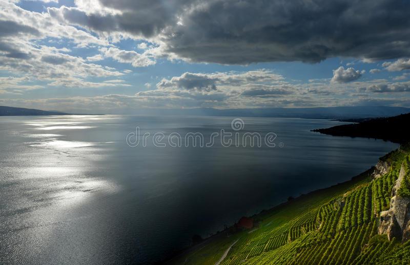 Lake Geneva. Light and Dark play on Lake Geneva and the UNESCO listed vinyards of Lavaux, near Montreux in Switzerland royalty free stock images