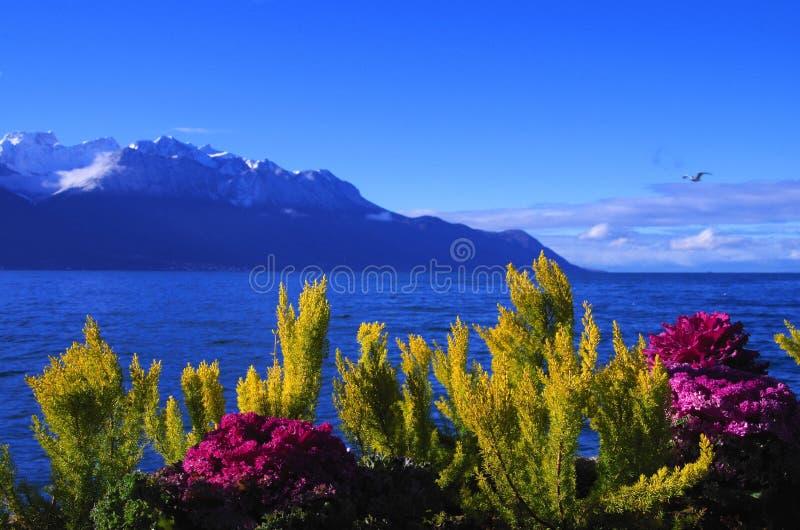 Download Lake Geneva Royalty Free Stock Image - Image: 36895166
