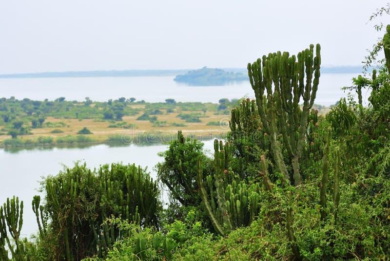 Lake George in Uganda stock photography