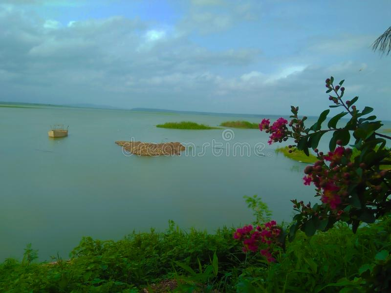 Lake and grass and flower in sky cloudy scence. Beautyful water lake in white boat, water side green plant of flower and grass. Lake and grass and flower in sky stock images