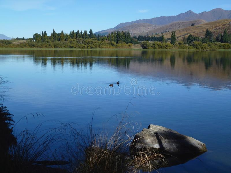 Lake Hayes - Queenstown New Zealand royalty free stock photography