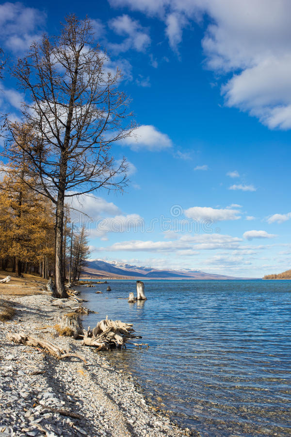Lake Hovsgol in Mongolia royalty free stock photography