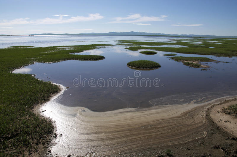 Lake in Hulunbuir Grassland royalty free stock photography