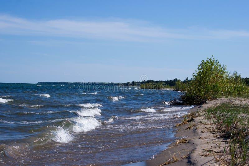 Lake Huron shoreline fotografering för bildbyråer