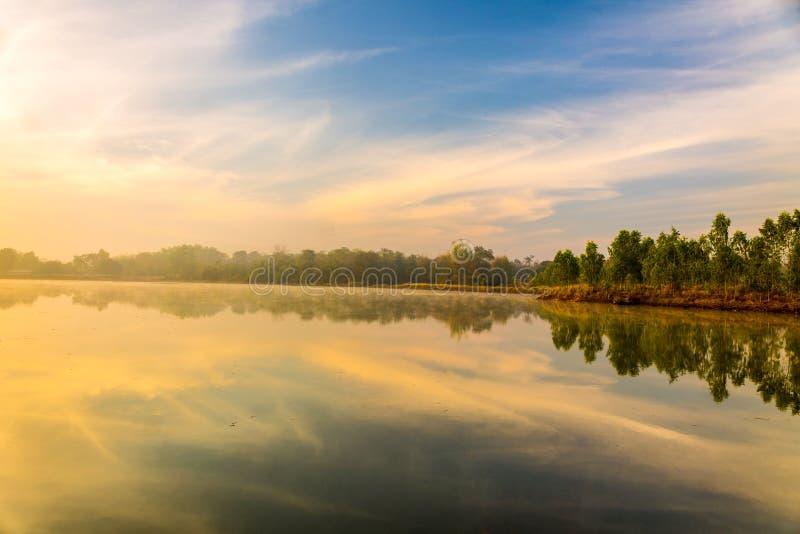 Lake i morgonen arkivbilder