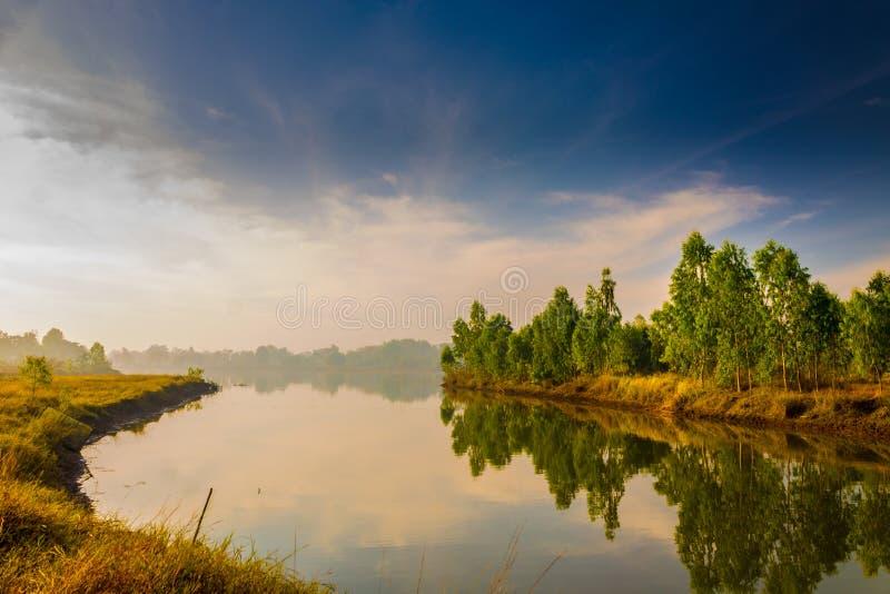 Lake i morgonen royaltyfria foton