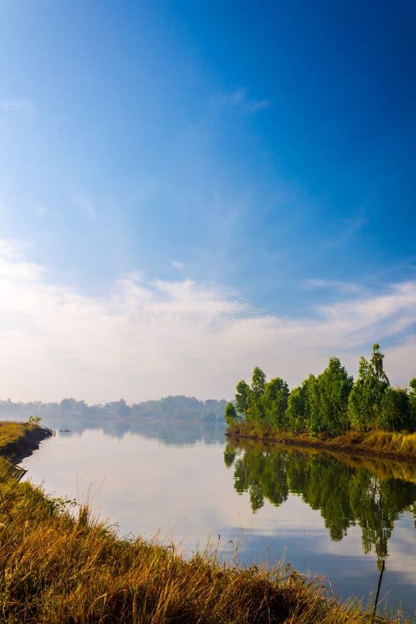 Lake i morgonen royaltyfria bilder