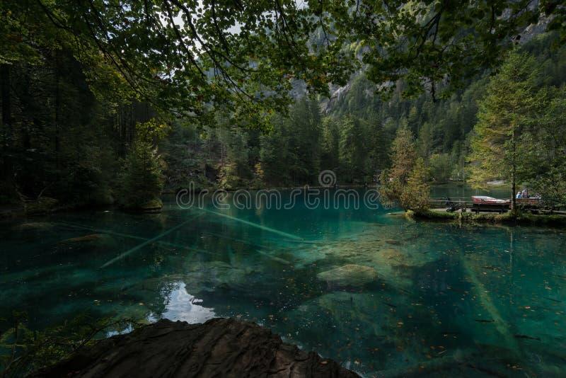 Lake i skogen arkivbild