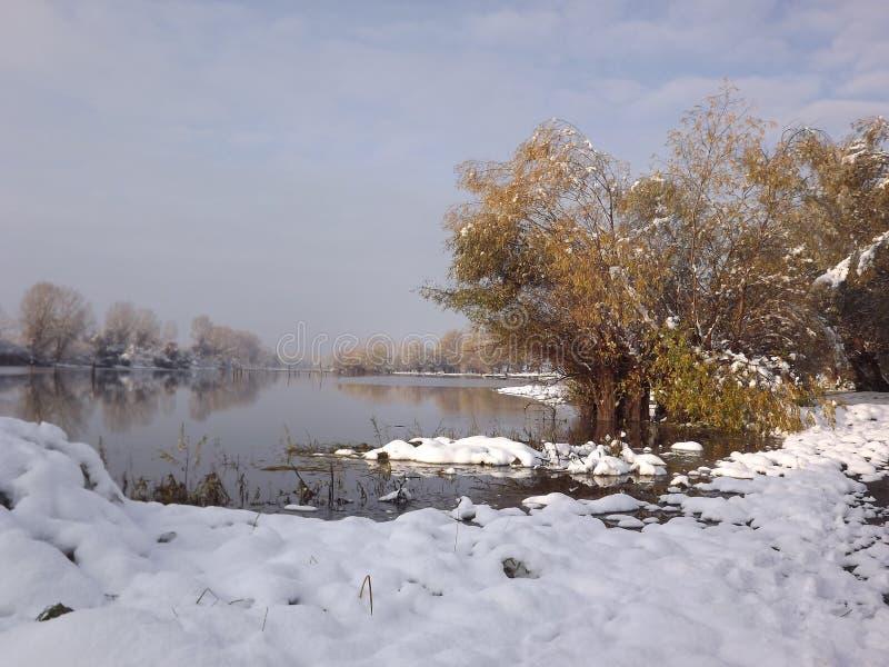 Lake i vinter arkivbild