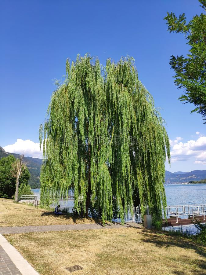 Lake Iseo North of Italy. Vacation stock image